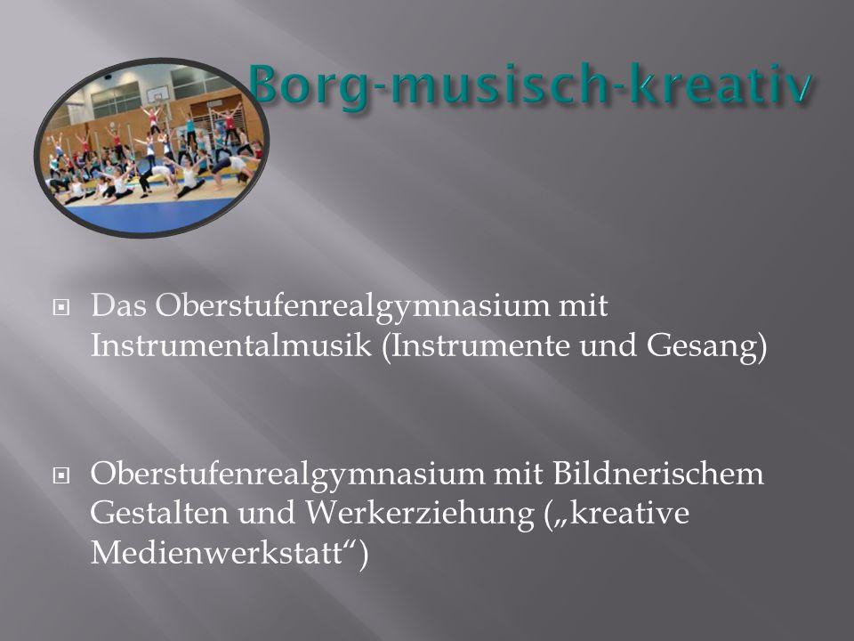 """ Das Oberstufenrealgymnasium mit Instrumentalmusik (Instrumente und Gesang)  Oberstufenrealgymnasium mit Bildnerischem Gestalten und Werkerziehung (""""kreative Medienwerkstatt )"""