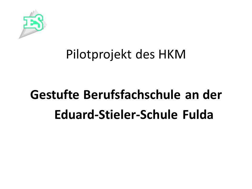 Pilotprojekt des HKM Gestufte Berufsfachschule an der Eduard-Stieler-Schule Fulda