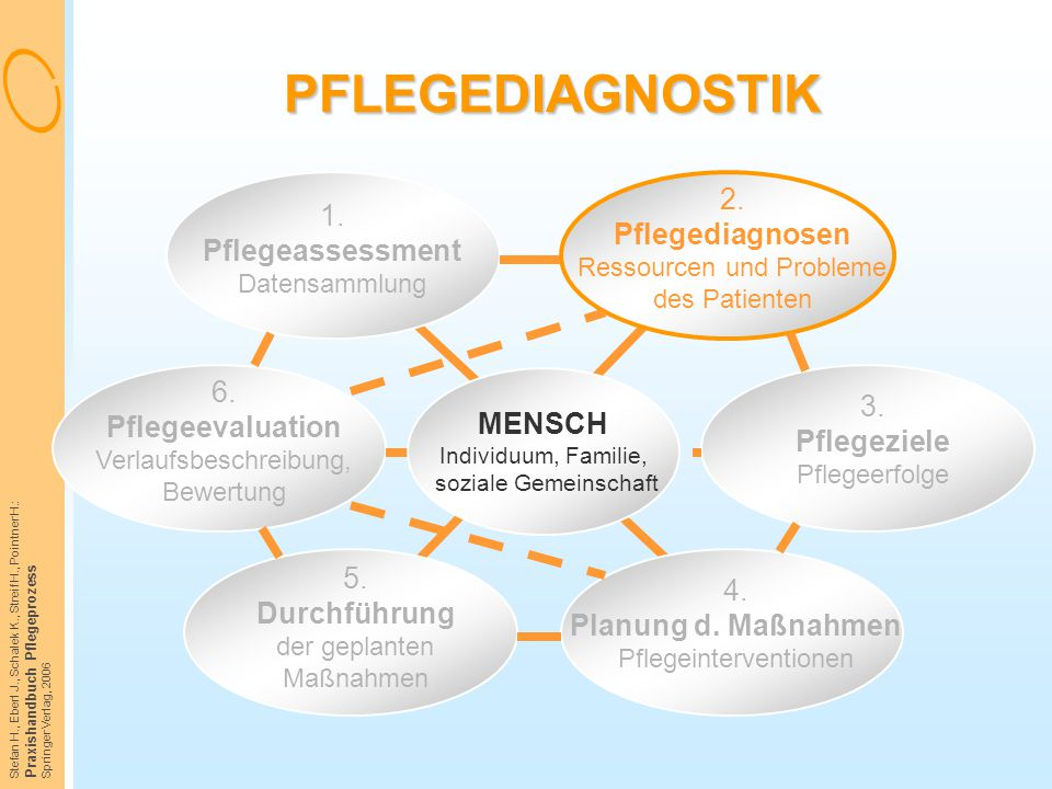 Stefan H., Eberl J., Schalek K., Streif H., Pointner H.: Praxishandbuch Pflegeprozess Springer Verlag, 2006 PFLEGEDIAGNOSTIK 1. Pflegeassessment Daten
