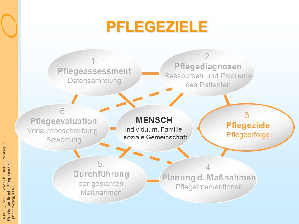 Stefan H., Eberl J., Schalek K., Streif H., Pointner H.: Praxishandbuch Pflegeprozess Springer Verlag, 2006 PFLEGEZIELE 1. Pflegeassessment Datensamml