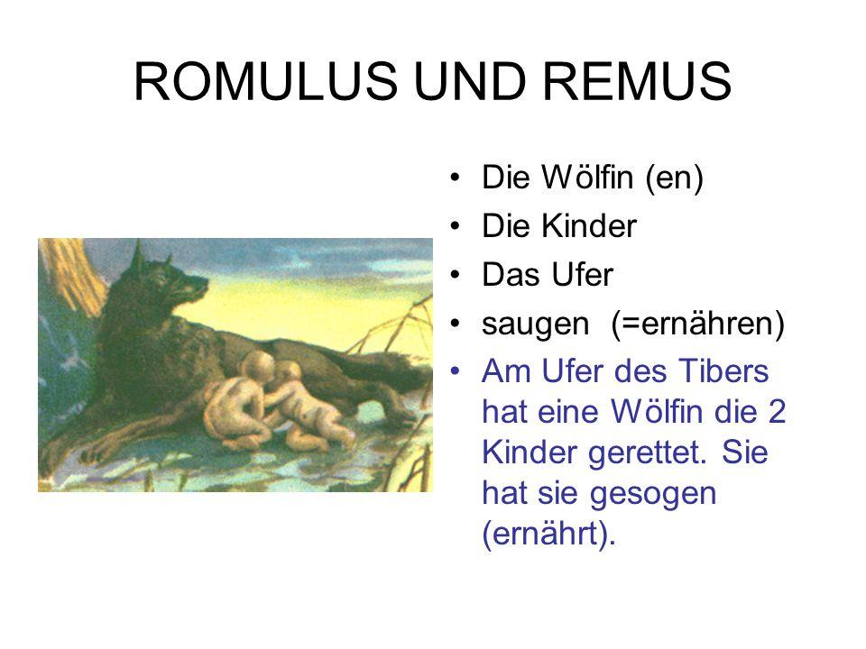 ROMULUS UND REMUS Die Wölfin (en) Die Kinder Das Ufer saugen (=ernähren) Am Ufer des Tibers hat eine Wölfin die 2 Kinder gerettet. Sie hat sie gesogen