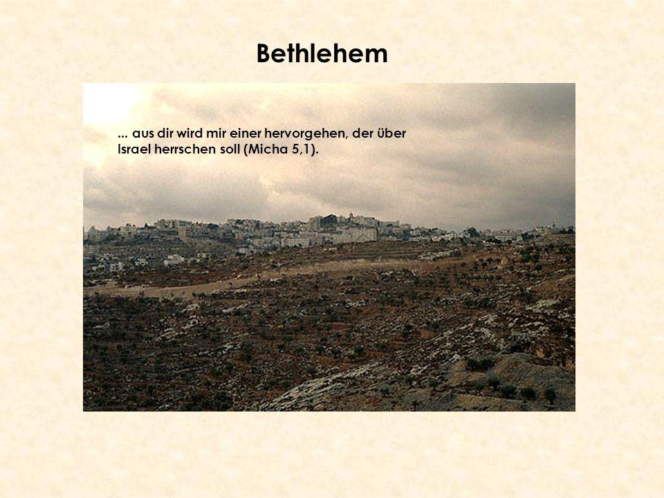 Bethlehem... aus dir wird mir einer hervorgehen, der über Israel herrschen soll (Micha 5,1).