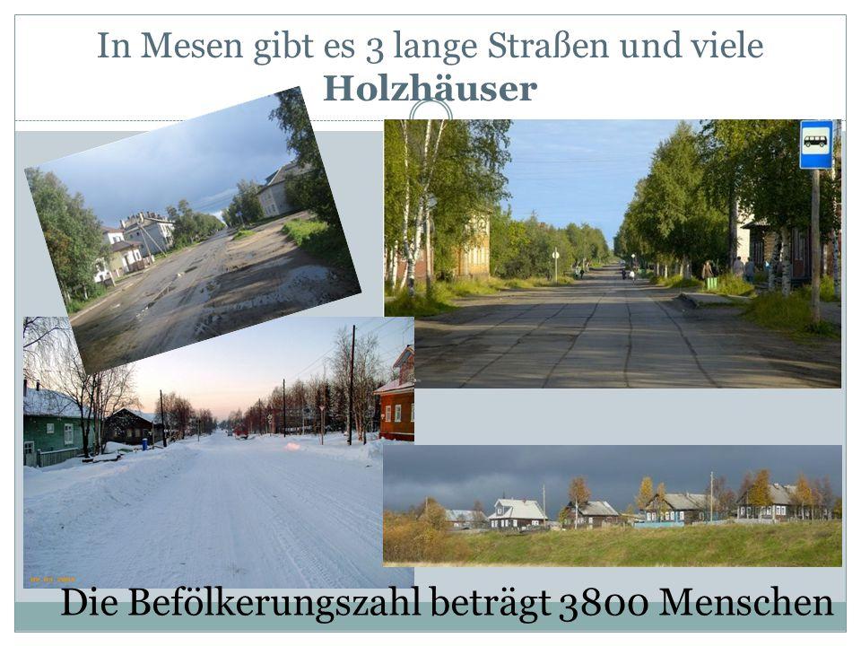 In Mesen gibt es 3 lange Straßen und viele Holzhäuser Die Befölkerungszahl beträgt 3800 Menschen
