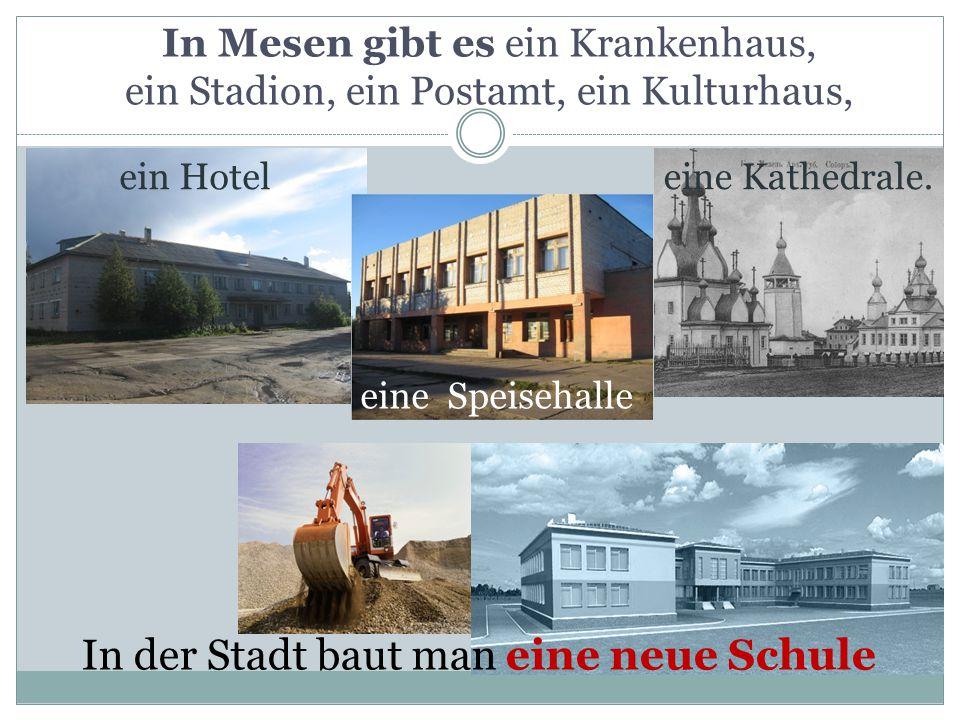 In Mesen gibt es ein Krankenhaus, ein Stadion, ein Postamt, ein Kulturhaus, eine Kathedrale.ein Hotel eine Speisehalle In der Stadt baut man eine neue Schule
