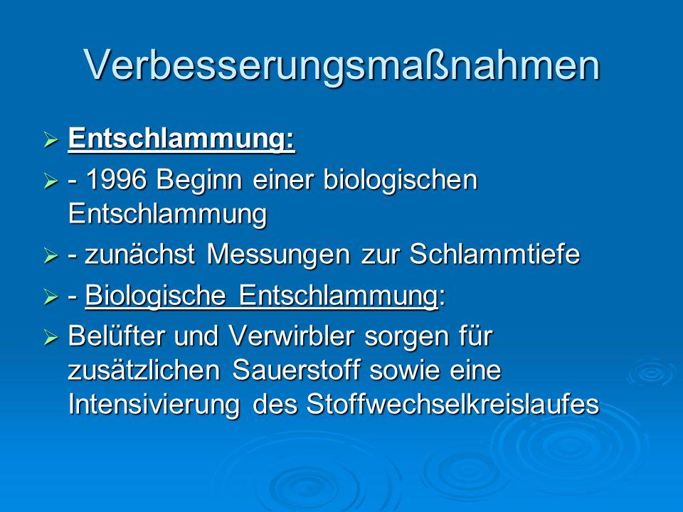 Verbesserungsmaßnahmen  Entschlammung:  - 1996 Beginn einer biologischen Entschlammung  - zunächst Messungen zur Schlammtiefe  - Biologische Entsc