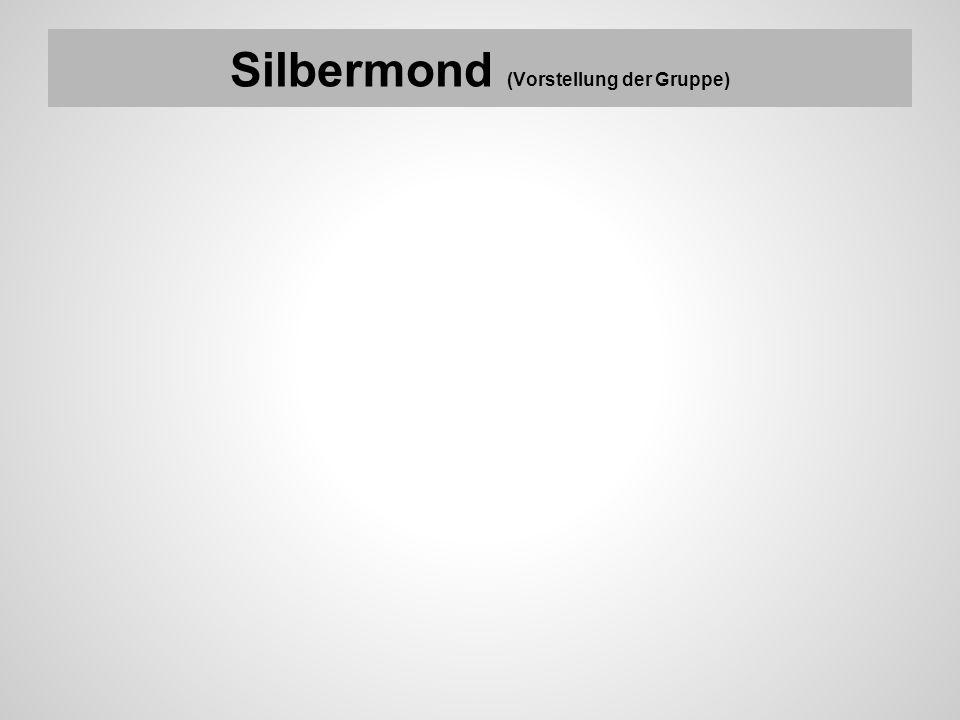 Silbermond (Vorstellung der Gruppe)