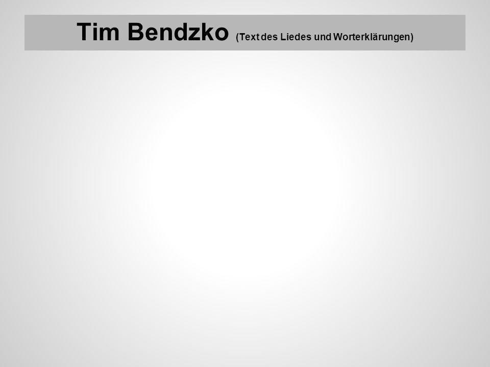 Tim Bendzko (Text des Liedes und Worterklärungen)