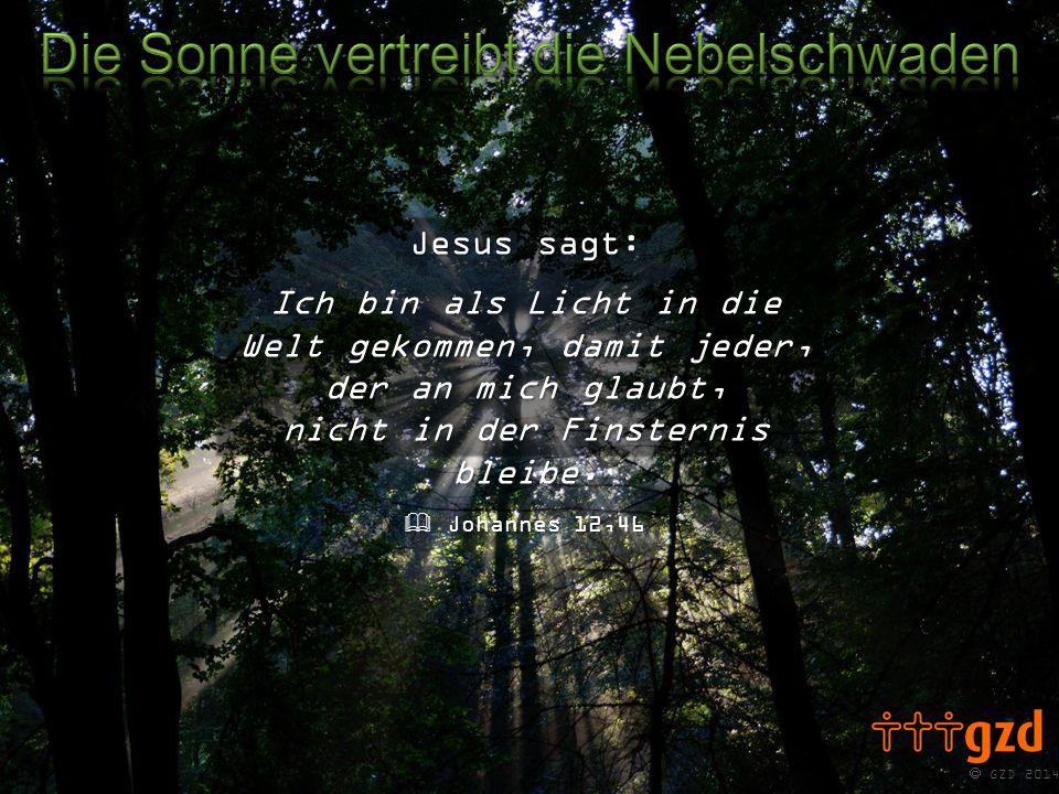  GZD 2014 Jesus sagt: Ich bin als Licht in die Welt gekommen, damit jeder, der an mich glaubt, nicht in der Finsternis bleibe.  Johannes 12,46