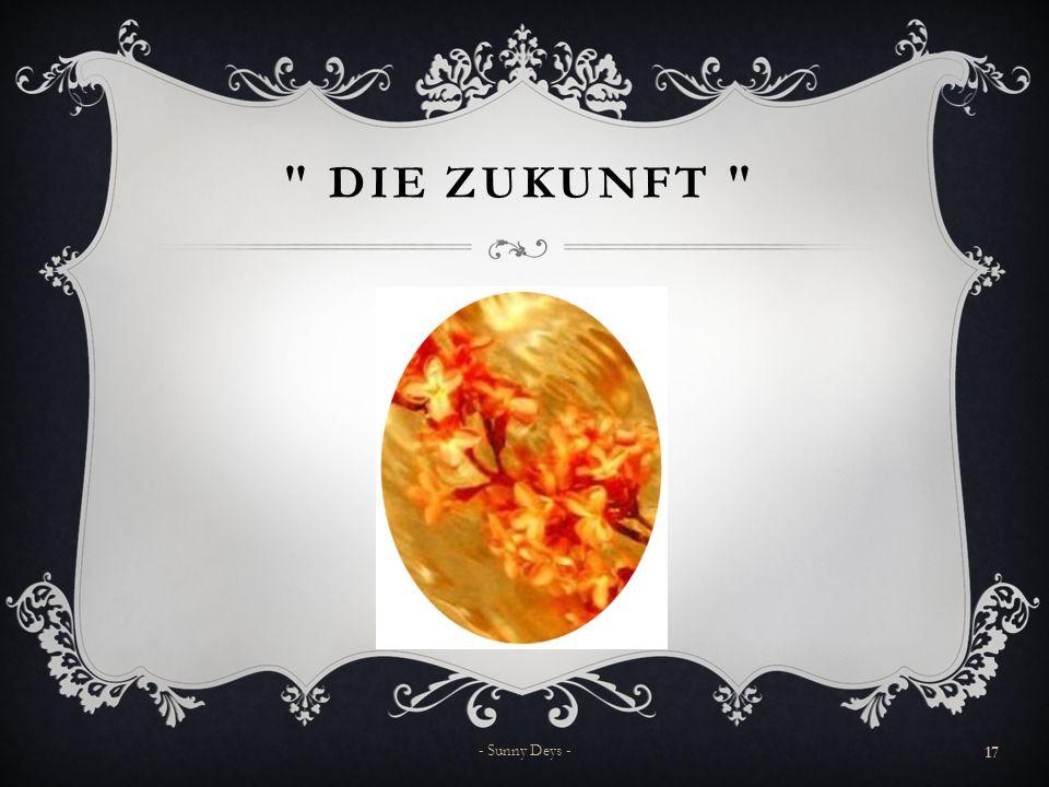 DIE ZUKUNFT 17 - Sunny Deys -