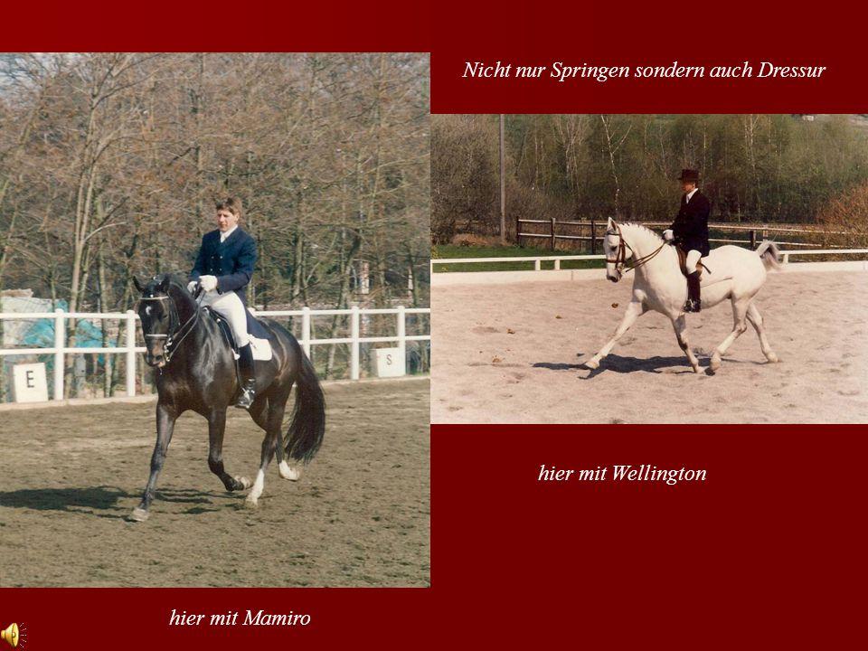Nicht nur Springen sondern auch Dressur hier mit Wellington hier mit Mamiro