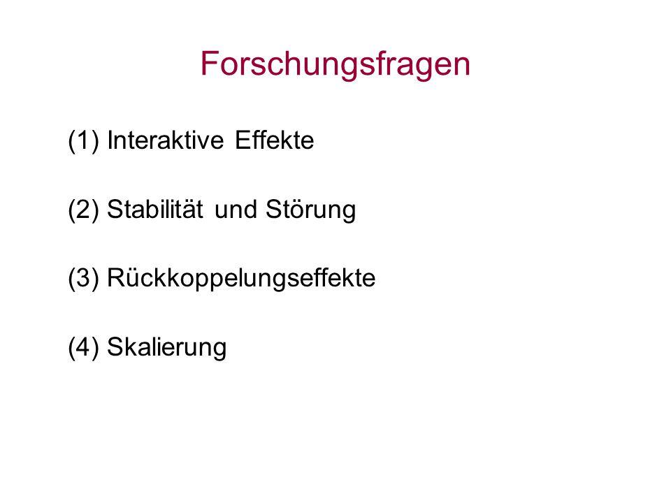 Forschungsfragen (1) Interaktive Effekte (2) Stabilität und Störung (3) Rückkoppelungseffekte (4) Skalierung