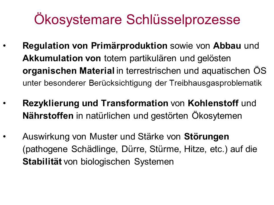 Ökosystemare Schlüsselprozesse Regulation von Primärproduktion sowie von Abbau und Akkumulation von totem partikulären und gelösten organischen Materi