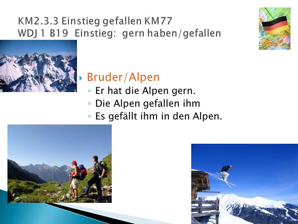  Bruder/Alpen ◦ Er hat die Alpen gern. ◦ Die Alpen gefallen ihm ◦ Es gefällt ihm in den Alpen.