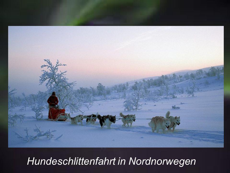 Ureinwohner Norwegens (Samen)