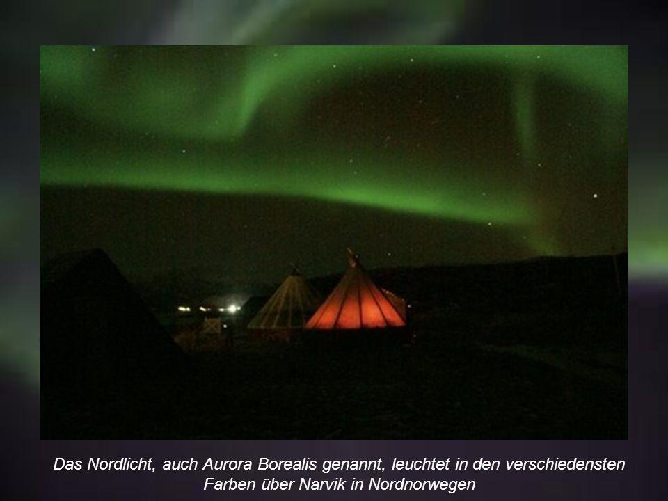In Narvik in Nordnorwegen war die Nordlicht-Aktivität in den letzten Jahren besonders stark