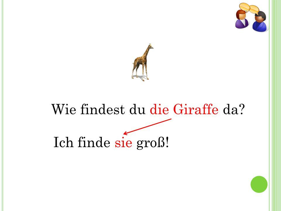 Wie findest du die Giraffe da Ich finde sie groß!