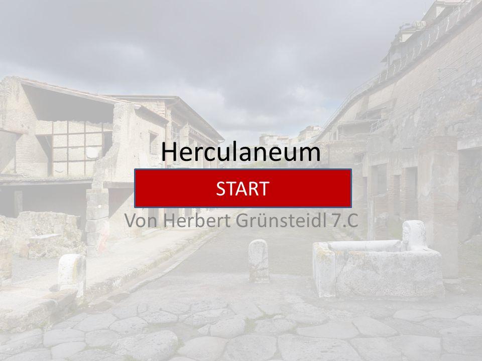 Herculaneum Von Herbert Grünsteidl 7.C START
