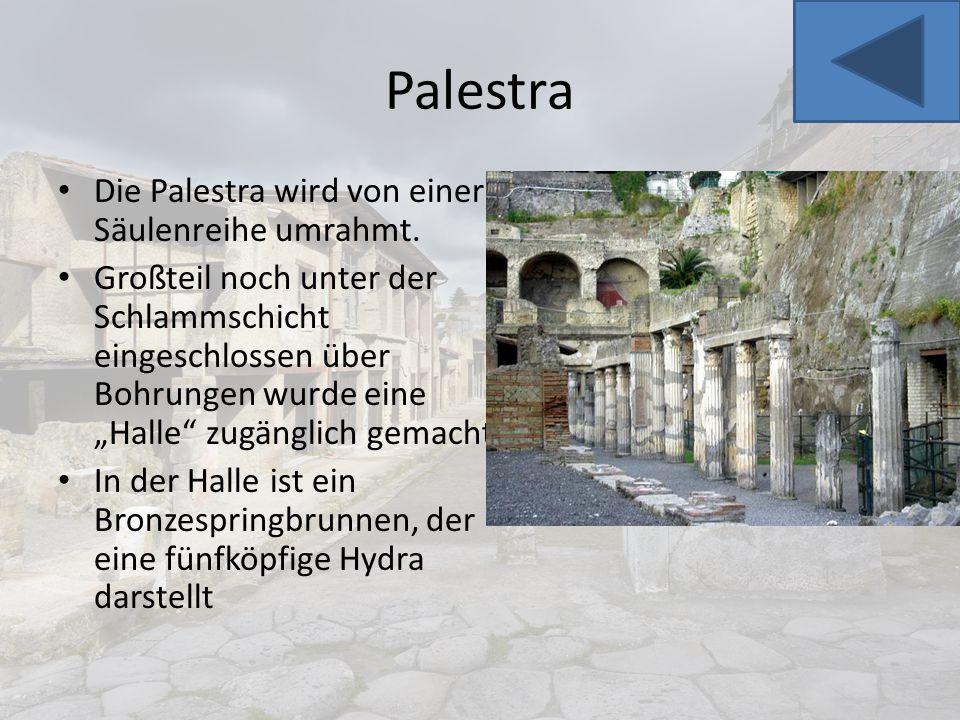 """Palestra Die Palestra wird von einer Säulenreihe umrahmt. Großteil noch unter der Schlammschicht eingeschlossen über Bohrungen wurde eine """"Halle"""" zugä"""