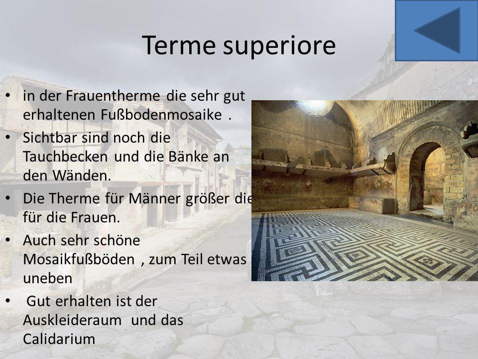 Terme superiore in der Frauentherme die sehr gut erhaltenen Fußbodenmosaike. Sichtbar sind noch die Tauchbecken und die Bänke an den Wänden. Die Therm