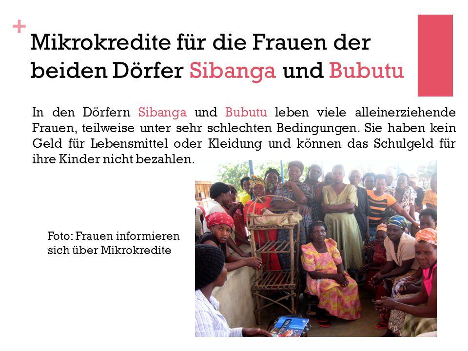 + Mikrokredite für die Frauen der beiden Dörfer Sibanga und Bubutu In den Dörfern Sibanga und Bubutu leben viele alleinerziehende Frauen, teilweise unter sehr schlechten Bedingungen.