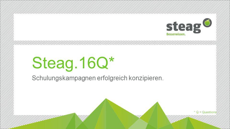 Titelmasterformat durch Klicken bearbeiten Erste Ebene  Zweite Ebene Dritte Ebene Steag.16Q* Schulungskampagnen erfolgreich konzipieren.