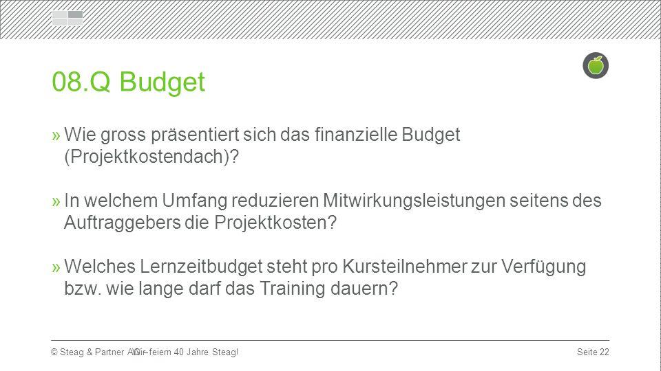 Titelmasterformat durch Klicken bearbeiten Erste Ebene  Zweite Ebene Dritte Ebene Seite 22 © Steag & Partner AG – 08.Q Budget  Wie gross präsentiert sich das finanzielle Budget (Projektkostendach).