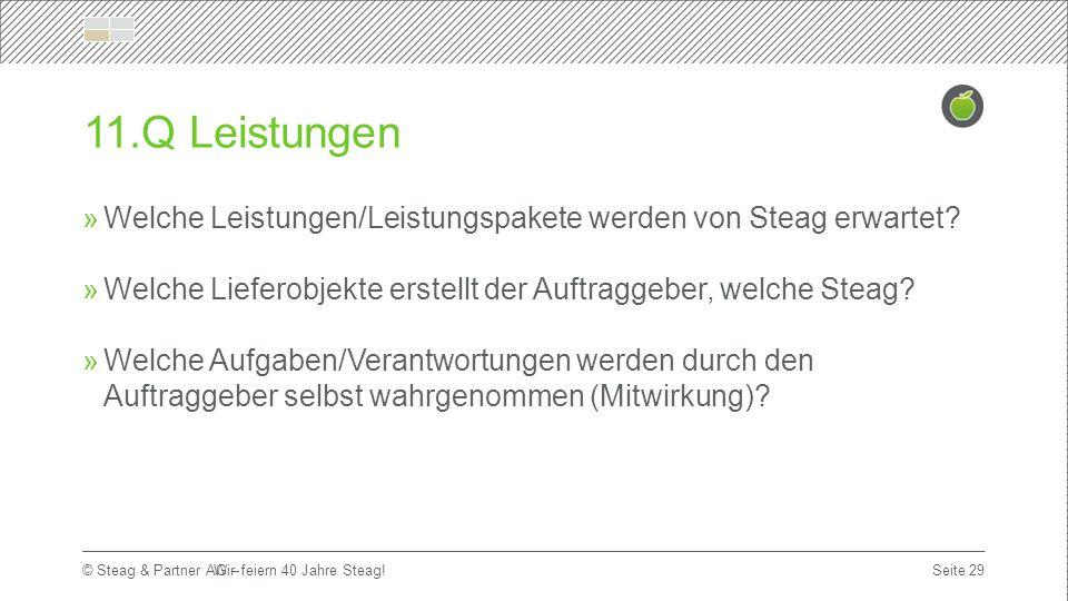 Titelmasterformat durch Klicken bearbeiten Erste Ebene  Zweite Ebene Dritte Ebene Seite 29 © Steag & Partner AG – 11.Q Leistungen  Welche Leistungen/Leistungspakete werden von Steag erwartet.