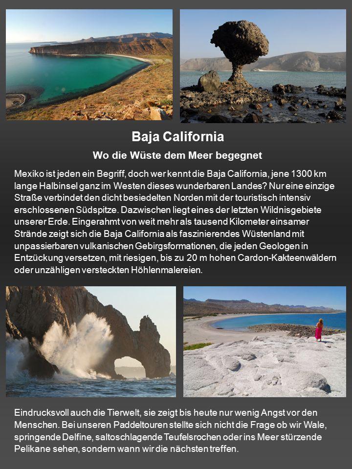 Baja California Wo die Wüste dem Meer begegnet Mexiko ist jeden ein Begriff, doch wer kennt die Baja California, jene 1300 km lange Halbinsel ganz im Westen dieses wunderbaren Landes.