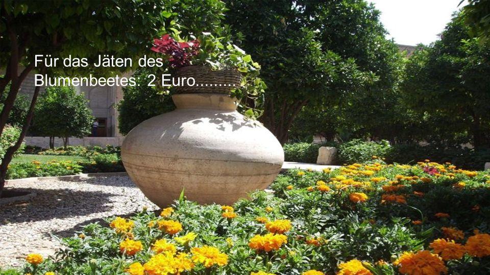Für das Jäten des Blumenbeetes: 2 Euro.........