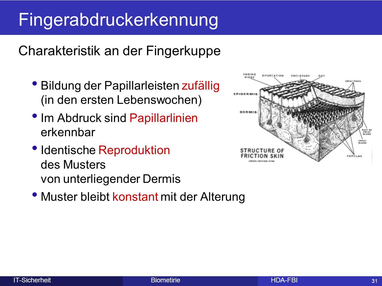 31 BiometirieHDA-FBIIT-Sicherheit Charakteristik an der Fingerkuppe Bildung der Papillarleisten zufällig (in den ersten Lebenswochen) Im Abdruck sind