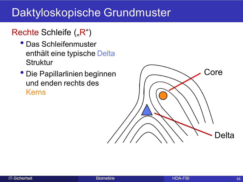 """33 BiometirieHDA-FBIIT-Sicherheit Rechte Schleife (""""R"""") Das Schleifenmuster enthält eine typische Delta Struktur Die Papillarlinien beginnen und enden"""