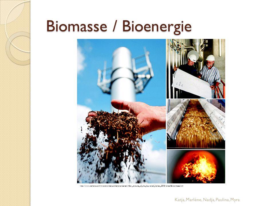 Biomasse / Bioenergie Katja, Marlène, Nadja, Paulina, Myra http://www.siemens.com/innovation/de/publikationen/zeitschriften_pictures_of_the_future/pof
