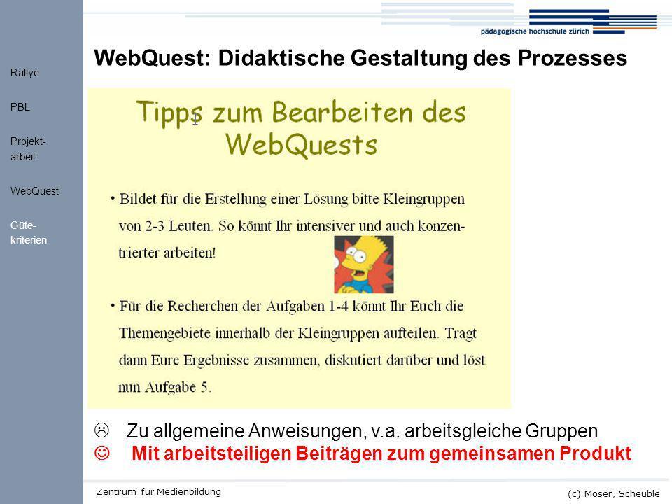 Kick-off ALMO (c) Moser, Scheuble Zentrum für Medienbildung  Zu allgemeine Anweisungen, v.a. arbeitsgleiche Gruppen Mit arbeitsteiligen Beiträgen zum