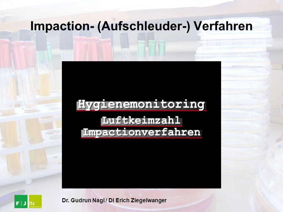 Dr. Gudrun Nagl / DI Erich Ziegelwanger Impaction- (Aufschleuder-) Verfahren