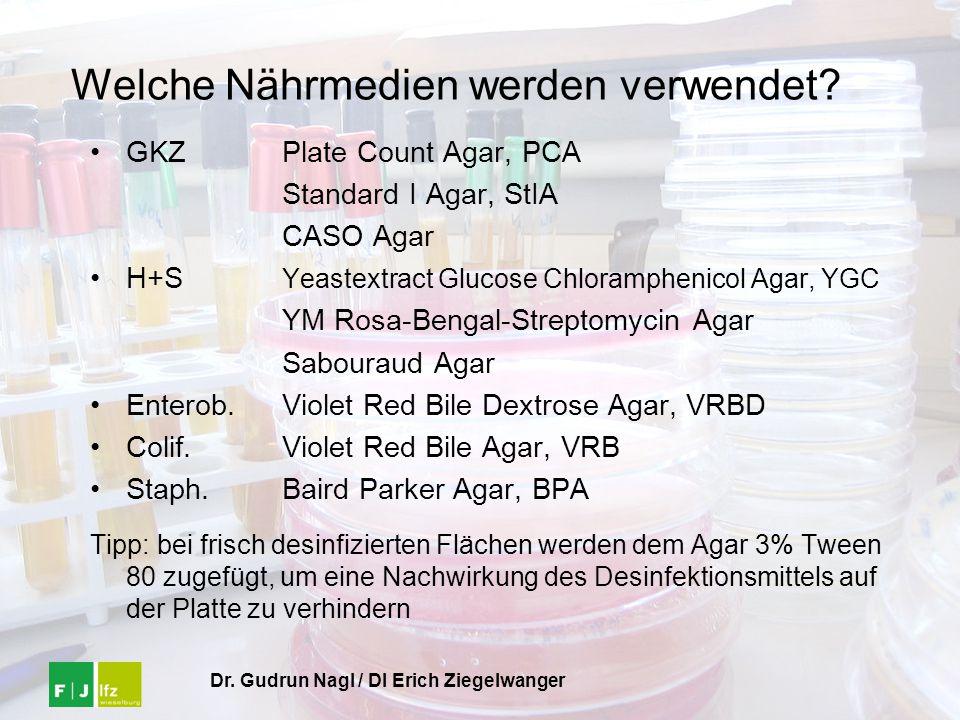 Dr. Gudrun Nagl / DI Erich Ziegelwanger Welche Nährmedien werden verwendet? GKZPlate Count Agar, PCA Standard I Agar, StIA CASO Agar H+S Yeastextract