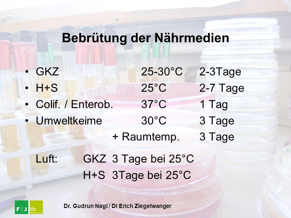 Dr. Gudrun Nagl / DI Erich Ziegelwanger Bebrütung der Nährmedien GKZ25-30°C2-3Tage H+S25°C2-7 Tage Colif. / Enterob.37°C1 Tag Umweltkeime30°C3 Tage +