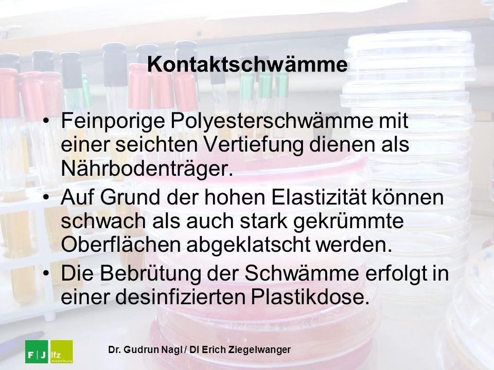 Dr. Gudrun Nagl / DI Erich Ziegelwanger Kontaktschwämme Feinporige Polyesterschwämme mit einer seichten Vertiefung dienen als Nährbodenträger. Auf Gru