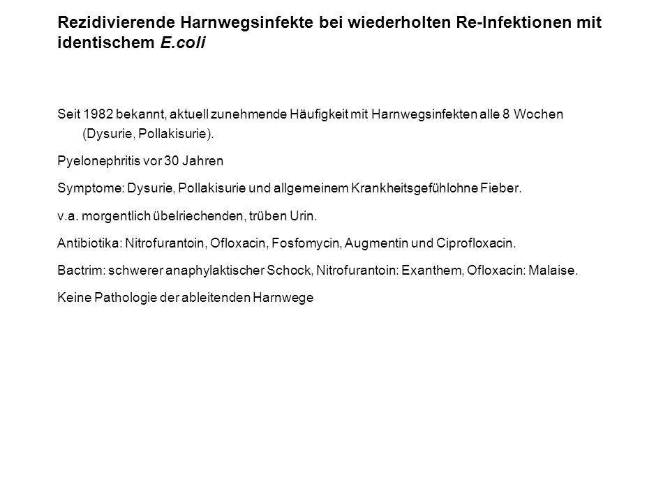 Rezidivierende Harnwegsinfekte bei wiederholten Re-Infektionen mit identischem E.coli Seit 1982 bekannt, aktuell zunehmende Häufigkeit mit Harnwegsinf