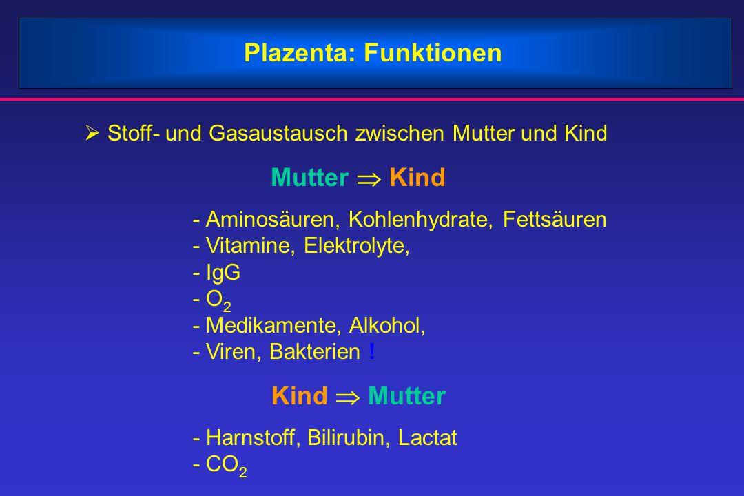 Plazenta: Funktionen  Stoff- und Gasaustausch zwischen Mutter und Kind Mutter  Kind - Aminosäuren, Kohlenhydrate, Fettsäuren - Vitamine, Elektrolyte