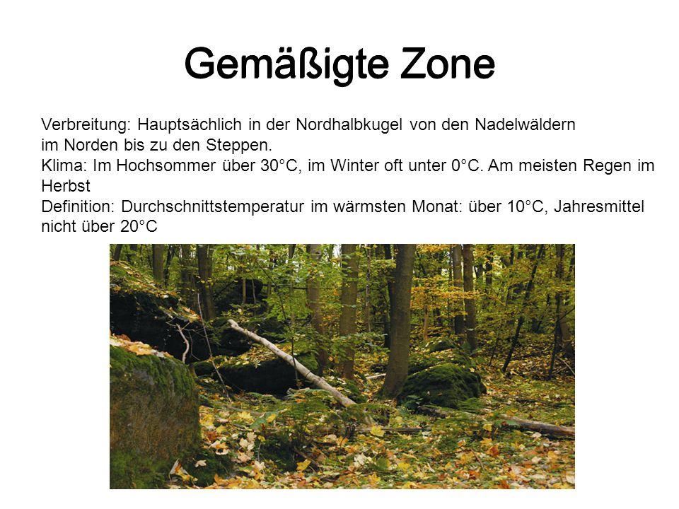 Gemäßigte Zone Verbreitung: Hauptsächlich in der Nordhalbkugel von den Nadelwäldern im Norden bis zu den Steppen. Klima: Im Hochsommer über 30°C, im W