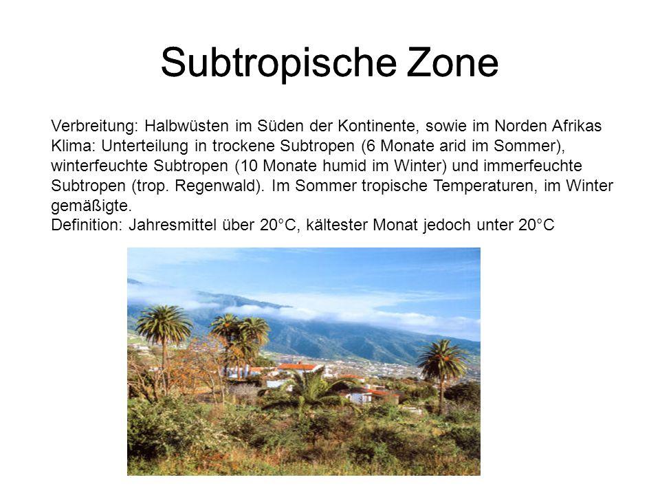 Subtropische Zone Verbreitung: Halbwüsten im Süden der Kontinente, sowie im Norden Afrikas Klima: Unterteilung in trockene Subtropen (6 Monate arid im