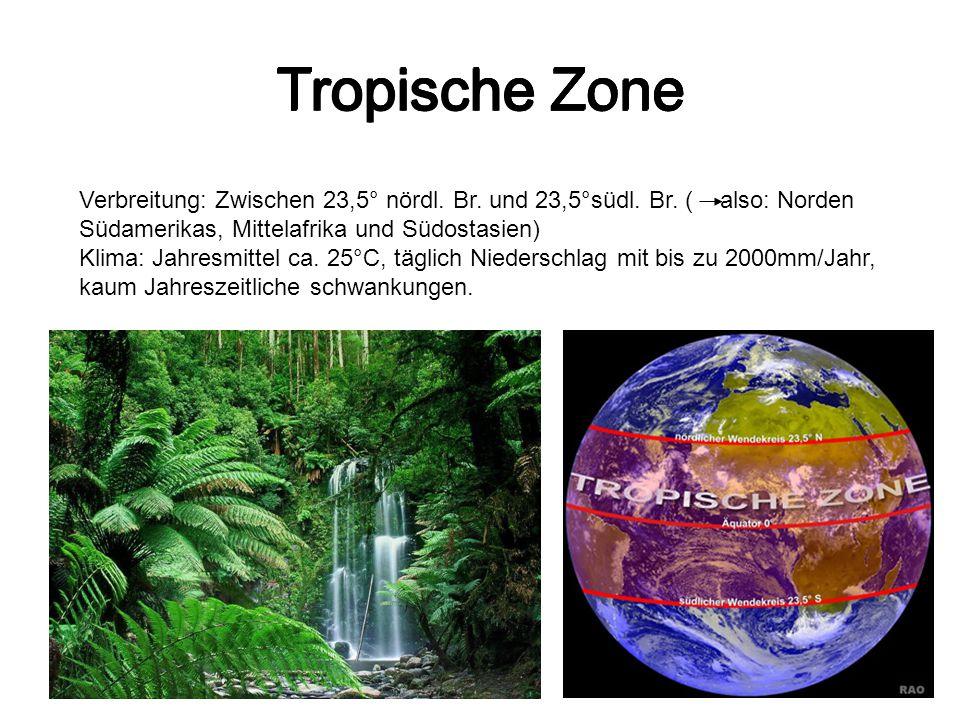 Tropische Zone Verbreitung: Zwischen 23,5° nördl. Br. und 23,5°südl. Br. ( also: Norden Südamerikas, Mittelafrika und Südostasien) Klima: Jahresmittel