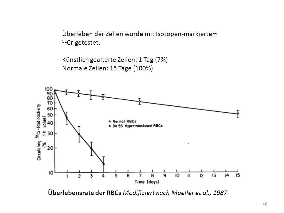 19 Überleben der Zellen wurde mit Isotopen-markiertem 51 Cr getestet. Künstlich gealterte Zellen: 1 Tag (7%) Normale Zellen: 15 Tage (100%) Überlebens