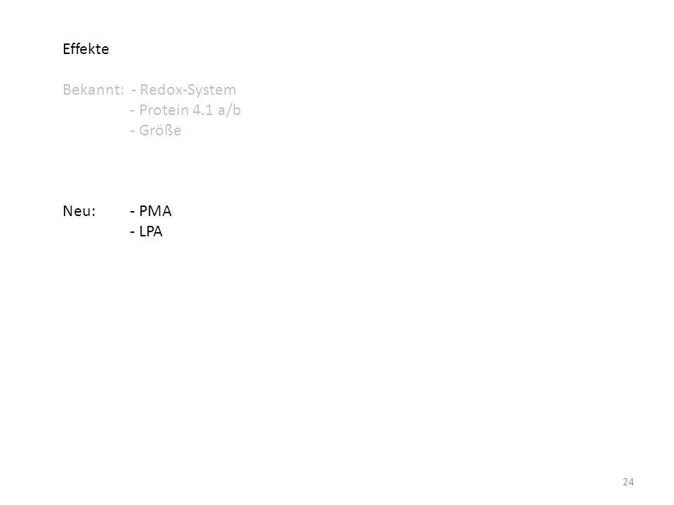 Effekte Bekannt: - Redox-System - Protein 4.1 a/b - Größe Neu: - PMA - LPA 24