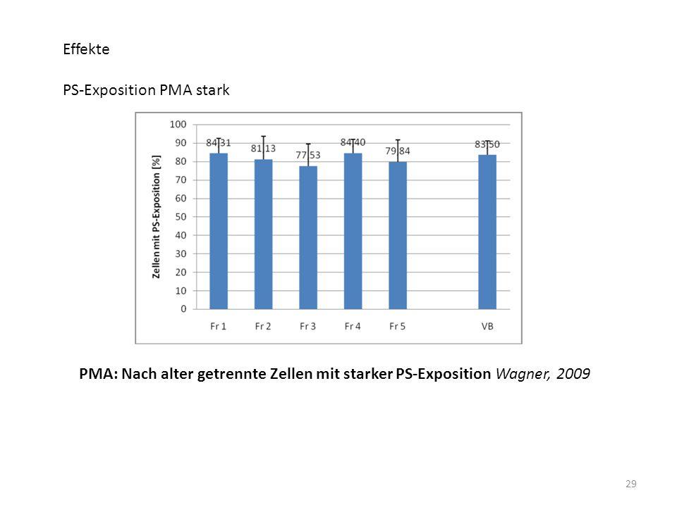 29 Effekte PS-Exposition PMA stark PMA: Nach alter getrennte Zellen mit starker PS-Exposition Wagner, 2009