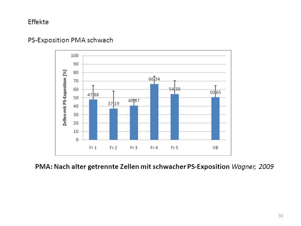 30 Effekte PS-Exposition PMA schwach PMA: Nach alter getrennte Zellen mit schwacher PS-Exposition Wagner, 2009