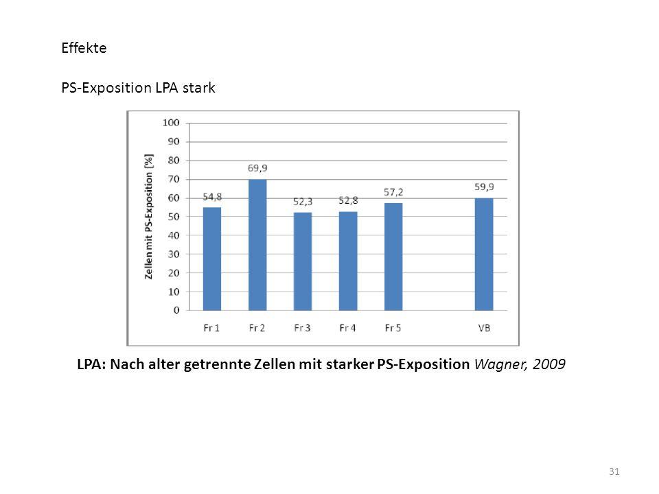 31 Effekte PS-Exposition LPA stark LPA: Nach alter getrennte Zellen mit starker PS-Exposition Wagner, 2009