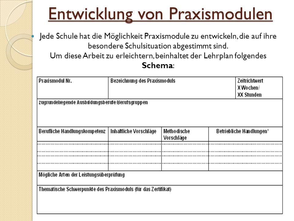 Entwicklung von Praxismodulen Jede Schule hat die Möglichkeit Praxismodule zu entwickeln, die auf ihre besondere Schulsituation abgestimmt sind.