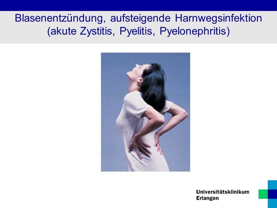 Blasenentzündung, aufsteigende Harnwegsinfektion (akute Zystitis, Pyelitis, Pyelonephritis)