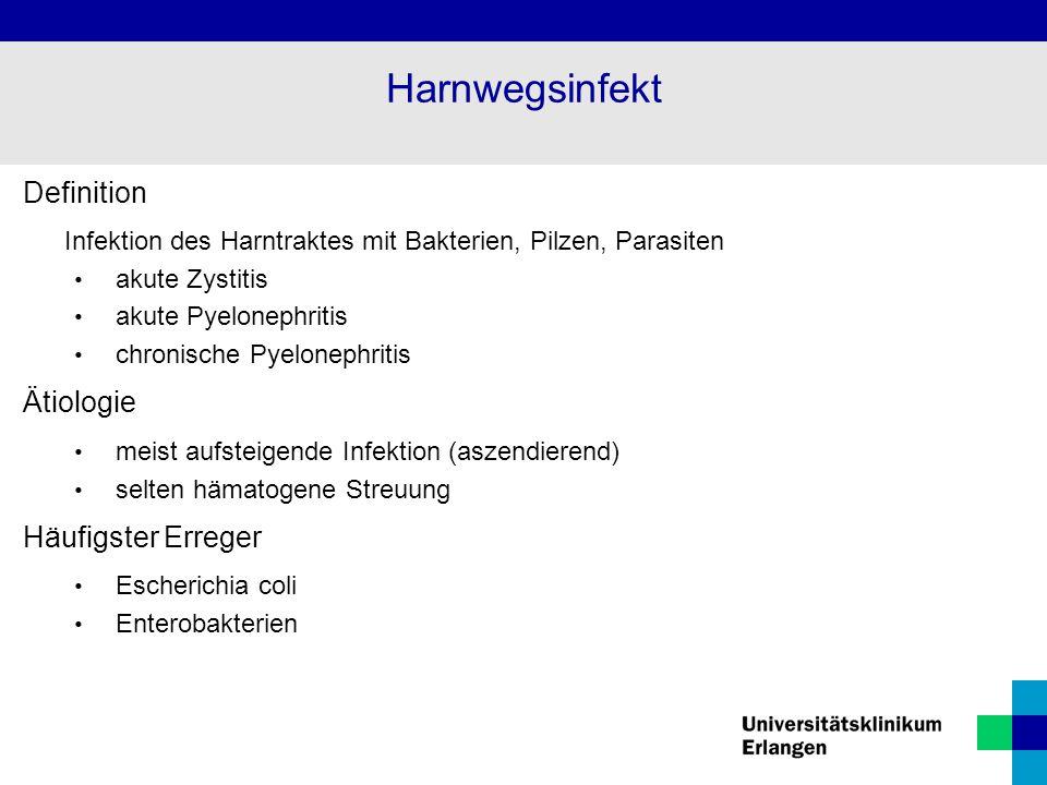 Definition Infektion des Harntraktes mit Bakterien, Pilzen, Parasiten akute Zystitis akute Pyelonephritis chronische Pyelonephritis Ätiologie meist aufsteigende Infektion (aszendierend) selten hämatogene Streuung Häufigster Erreger Escherichia coli Enterobakterien Harnwegsinfekt